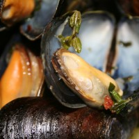 Classic Mussels with White Wine and Herbs